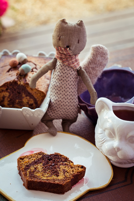 Schoko Kürbiskuchen mit Eichhörnchen und Katzentasse
